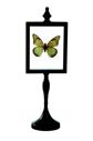 Ornament ozdobny motyl PAPALLONA - butterfly - metal/paper - Item: 28568 Pomax home